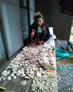 奄美の貝拾い
